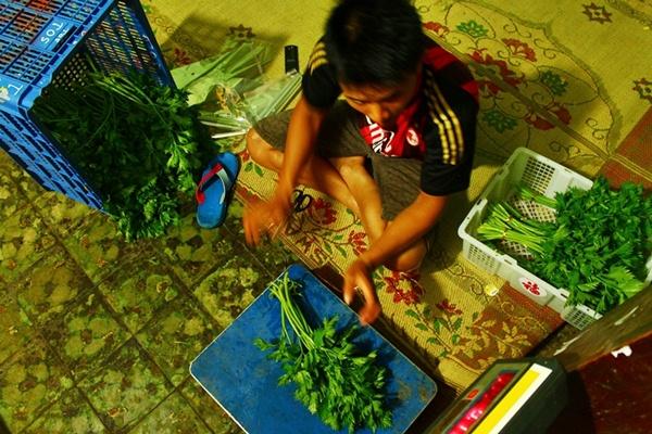 Mengemas sayur siap kirim (Foto : David Adhyaprawira).